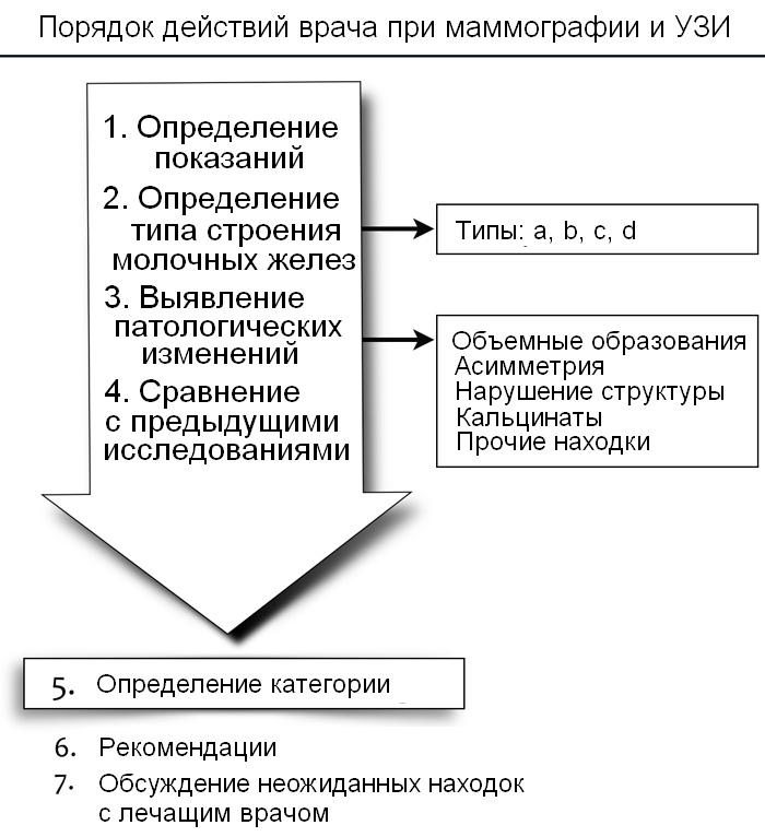 протокол маммографии образец