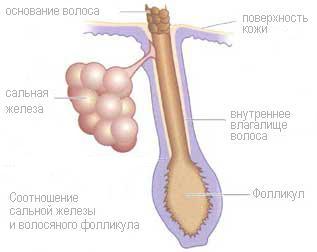 препараты для лечения холестерина из финляндии